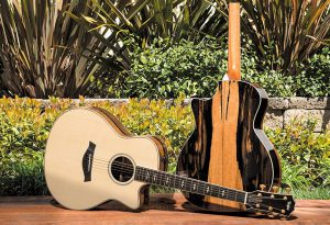 madinter_guitar