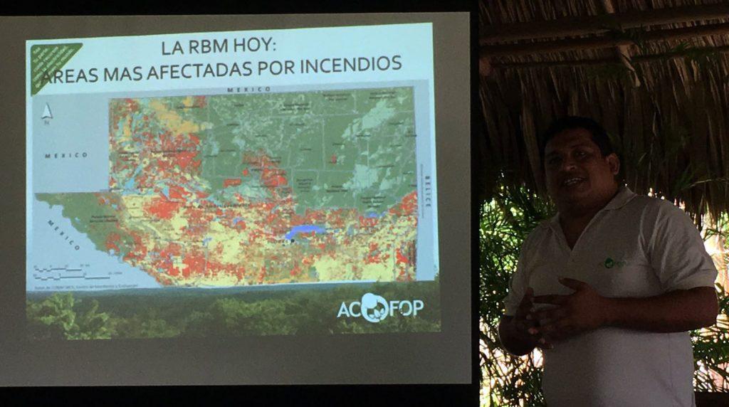 Donde hay manejo forestal de las comunidades locales no existe deforestación. Sin embargo, donde dicho manejo no existe (áreas en rojo), existen zonas deforestadas.