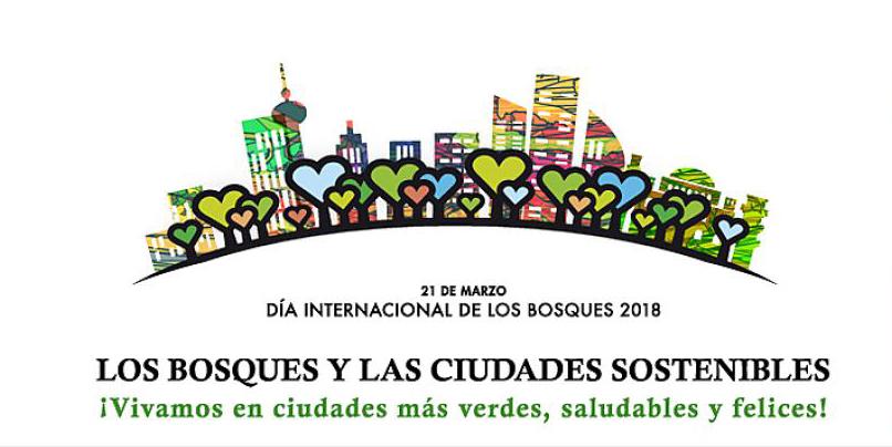 dia-internacional-de-los-bosques