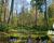 COPADE pone en marcha un proyecto para mejorar la sostenibilidad en los municipios rurales y parques nacionales